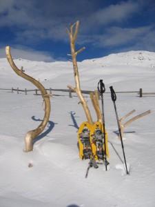 Süd Tirol 1-2010 023